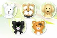 Салон Красоты для Животных - Pet Grooming Studio