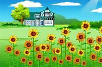 Цветочный Бутик - Flower Boutique