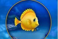 Фишдом - Fishdom