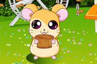 Маленький Хомяк - Pet Stars: Baby Hamster