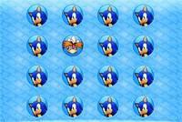 Соник: Найди Двойника - Twisting Puzzle Sonic