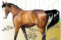 Одеваем Лошадку - Horse Show 2