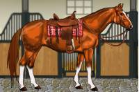 Одежда для Лошади - Horse Dressup