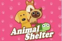 Приют Животных - Animal Shelter