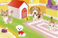 Зоомагазин - Pets Shop